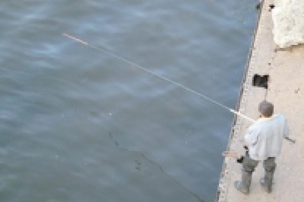 Союз журналистов выявит лучших рыбаков Липецка
