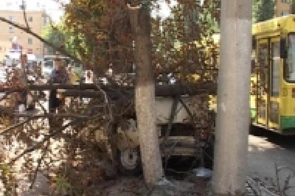 Автомобиль «срубил» дерево в центре Липецка