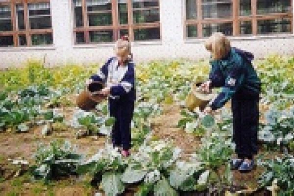 Воловский Центр занятости зажал детские деньги