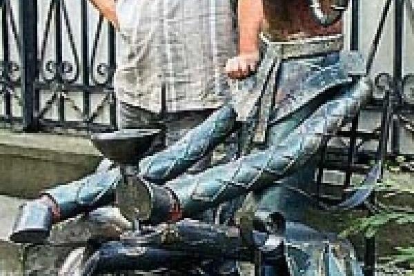 В Липецке появятся памятники Ослу и 38 попугаям