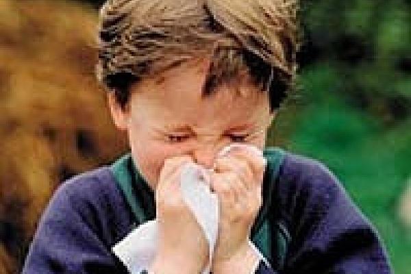 Липецк гриппа не боится