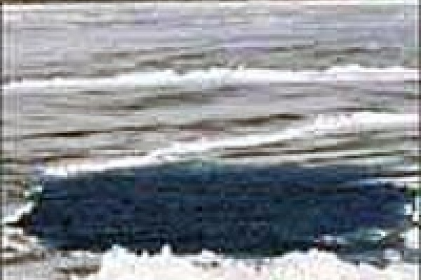 В реке Воронеж утонули два брата