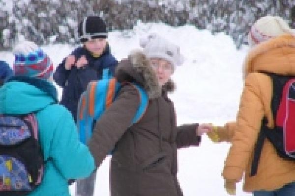 В Липецкой области начались школьные олимпиады