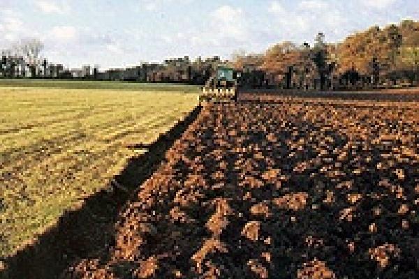 Руководителей покарали за порчу земель
