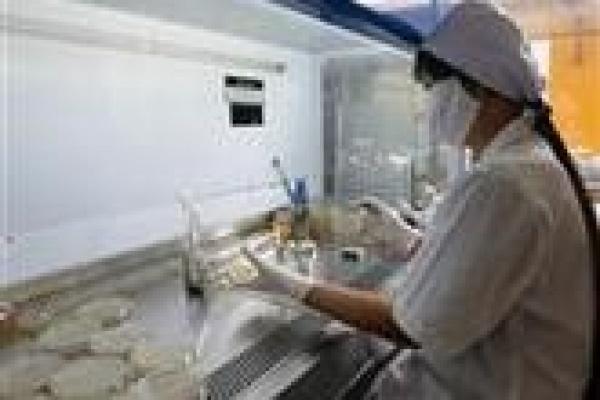 В Липецке и области пациентам диагностировали грипп в три раза чаще