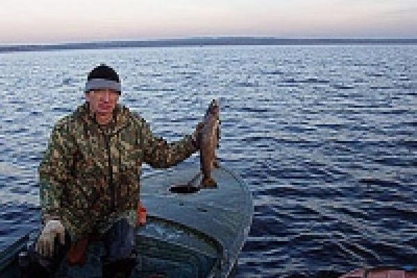 Инспектор рыбоохраны занялся бизнесом
