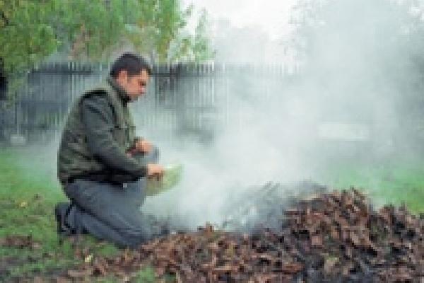 Поджег траву и дом спалил
