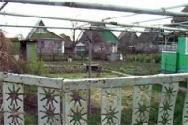 Милиционеры взяли с поличным садовых воров