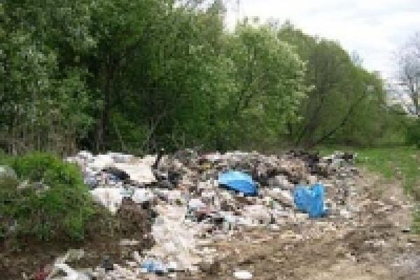 Киоски на трассе «Дон» загадили урочище Сотово-Загудовка
