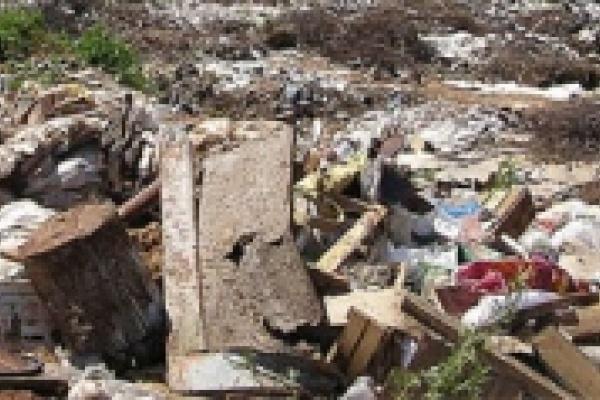 ГУК привлекли к ответственности за равнодушие к мусору