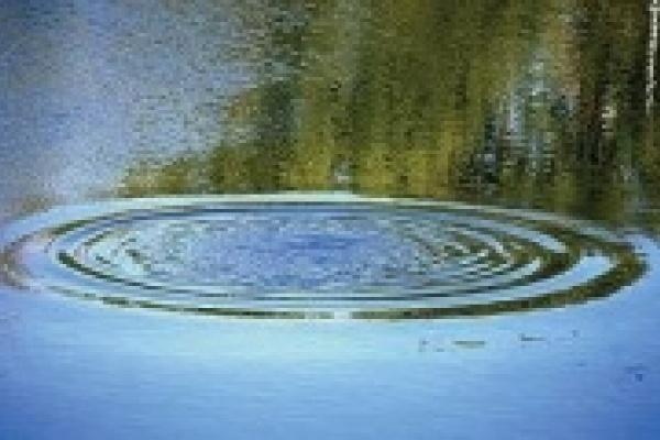 В реке Воронеж утонул москвич