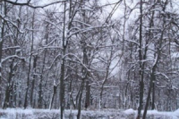 В Усмани без тепла остались жители целого микрорайона