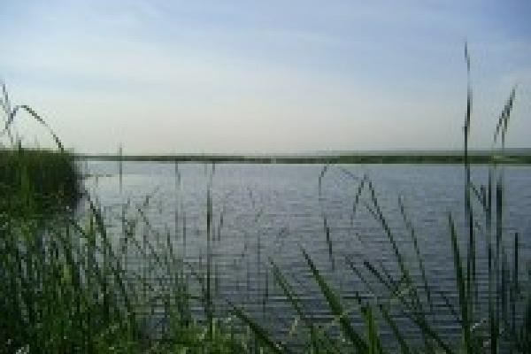 В Липецке за прошедшие сутки на воде спасены пять человек