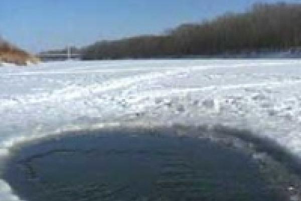 Рыбе в реке Воронеж кислородное голодание не грозит