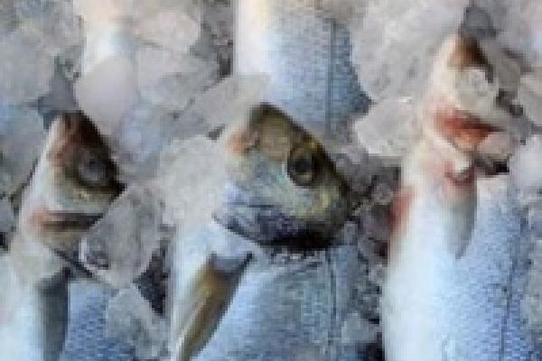 На первом месте - жалобы на рыбу