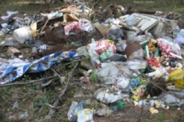 За мусор в лесу - штраф 5 тысяч