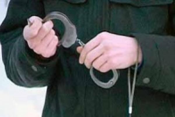 Задержаны елецкие топители