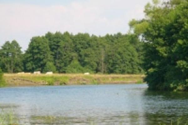 В Москве увидят картины с пейзажами Усмани