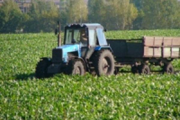 О фермерстве в Липецкой области