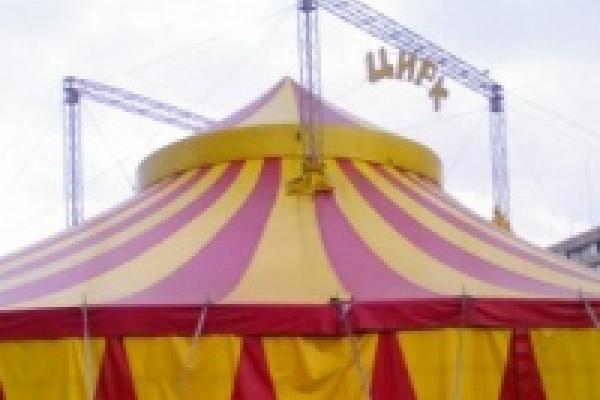 Цирковая благотворительность