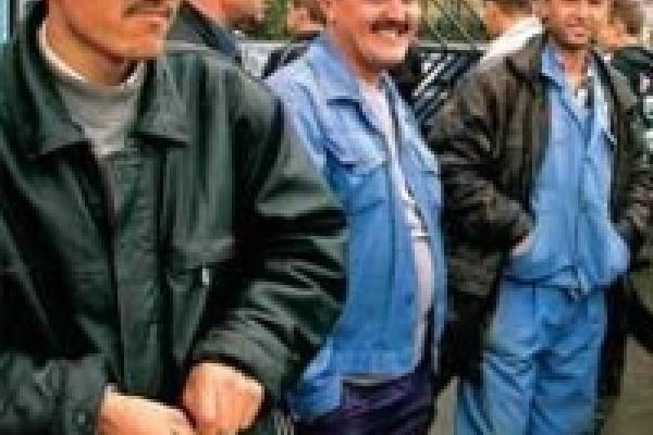 На «Индезите» незаконно работали узбеки