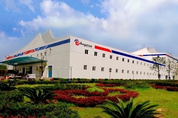 Китайская Angel Yeast в очередной раз сдвинула срок запуска дрожжевого завода в Липецкой области