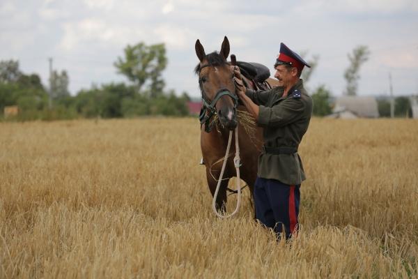 У Олега Королева появились конкуренты: казак и аграрий