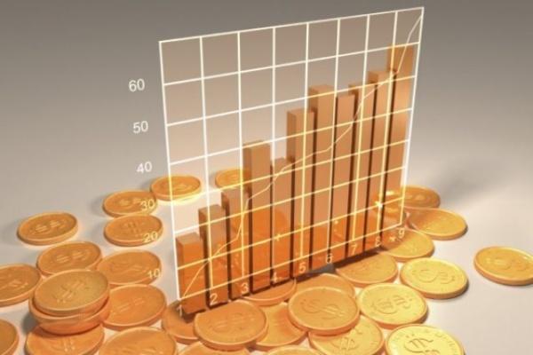 Чистая прибыль липецкой «Авроры» в 2014 году упала в 50 раз