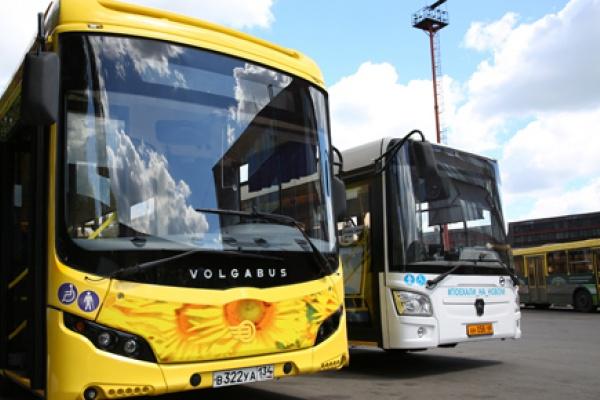 Липецкие власти за два года сократят бюджетную поддержку транспорта на 200 млн рублей