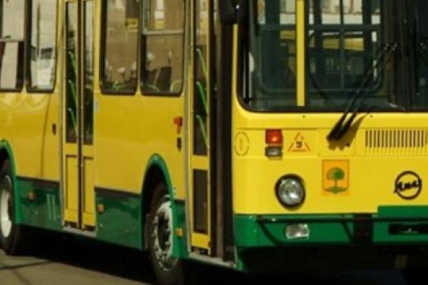 Забастовка частных перевозчиков парализовала автобусное сообщение в Липецкой области