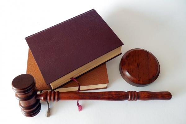 Банкротство липецкого бизнесмена Василия Бочарникова застопорилось из-за сделок его жены