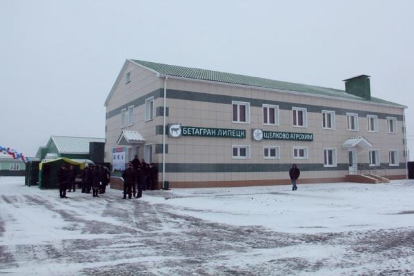 Генетическая ферма «Бетагран Липецк» вышла на самоокупаемость