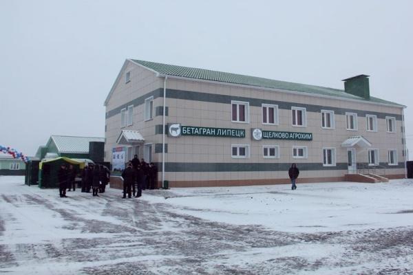 Башкирским животноводам выделят на покупку элитных эмбрионов у компании «Бетагран Липецк» 360 млн рублей