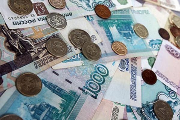 В бюджете Липецка 2015 года не хватит денег на реализацию ряда программ