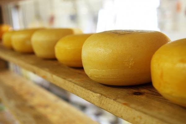 В продукции липецкого сыродельного завода нашли признаки фальсификата