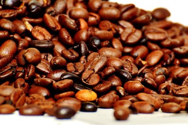 «Липецкая кофейная компания» начала возводить предприятие за 220 млн рублей в региональной экономзоне
