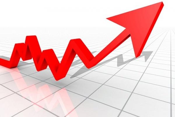 За месяц количество новых предприятий в Липецкой области увеличилось на 25%