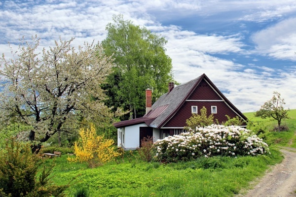 В Липецкой области цены на аренду частных домов за год упали почти на 8%
