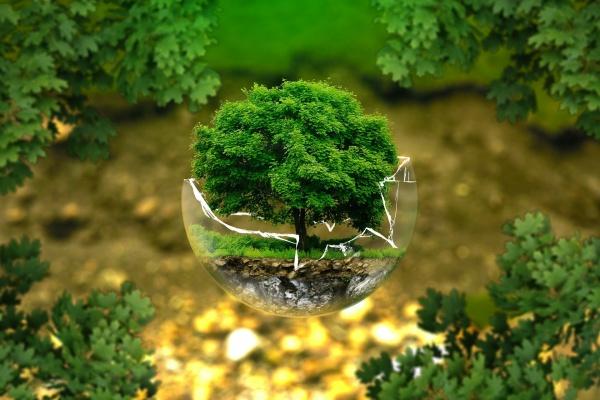 Новый генплан Кривецкого поселения скажется на экологической обстановке в Добровском районе?