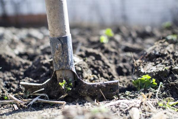 В Липецкой области чиновница незаконно «раздаривала» жилищные участки