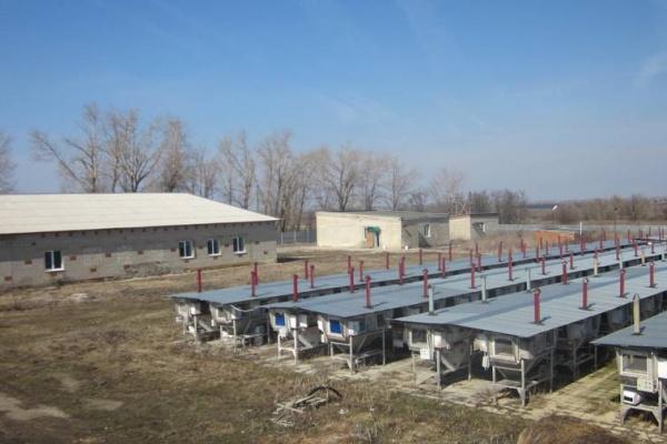 Компания «Липецк-МИАКРО» продаёт за 11 млн. рублей ферму по разведению кроликов