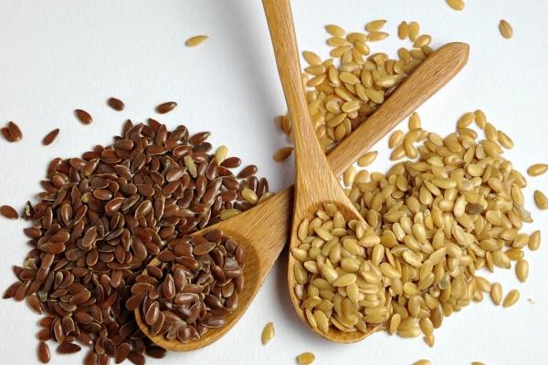 В Липецкой области появится завод семян за 5 млн евро
