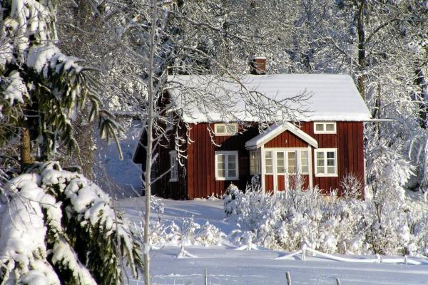 В Липецкой области цены на аренду частных домов за год рухнули на 14%