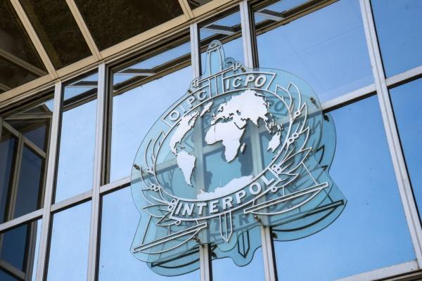 Интерпол установил нахождение проходящей по уголовному делу липецкой бизнес-леди Олеси Захаровой