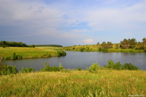 Под охрану экологов взяты пруды в Усманском районе