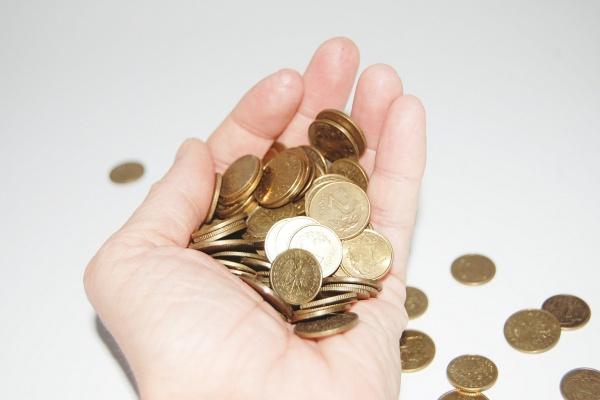Липецкий депутат назвал повышение прожиточного минимума на 117 рублей небывалой «щедростью»