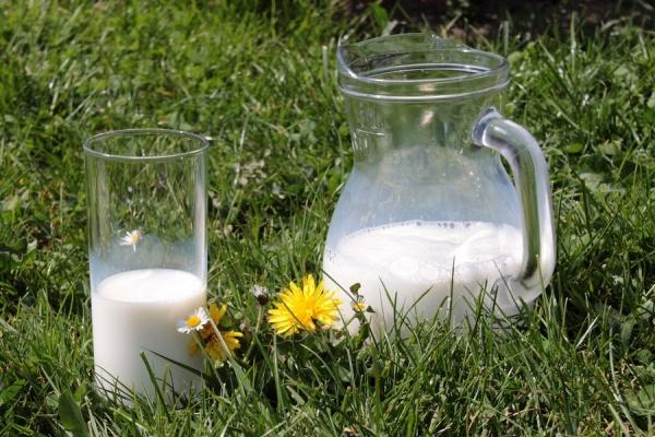 В Липецкой области запустили новое молочное производство за 22 млн рублей