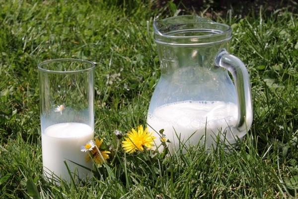 Липецкий завод по переработке молока потратит на модернизацию 120 млн рублей
