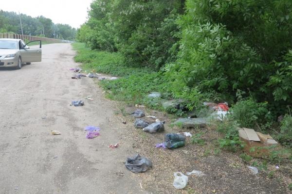 В Липецке набирает обороты еженедельная областная акция «Чистый четверг»