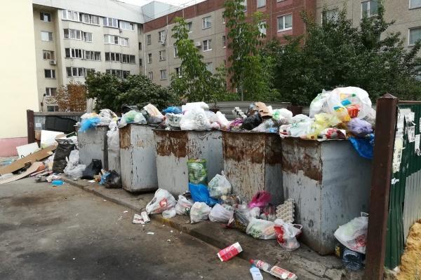 Липецку грозит режим ЧС из-за мусорного коллапса?
